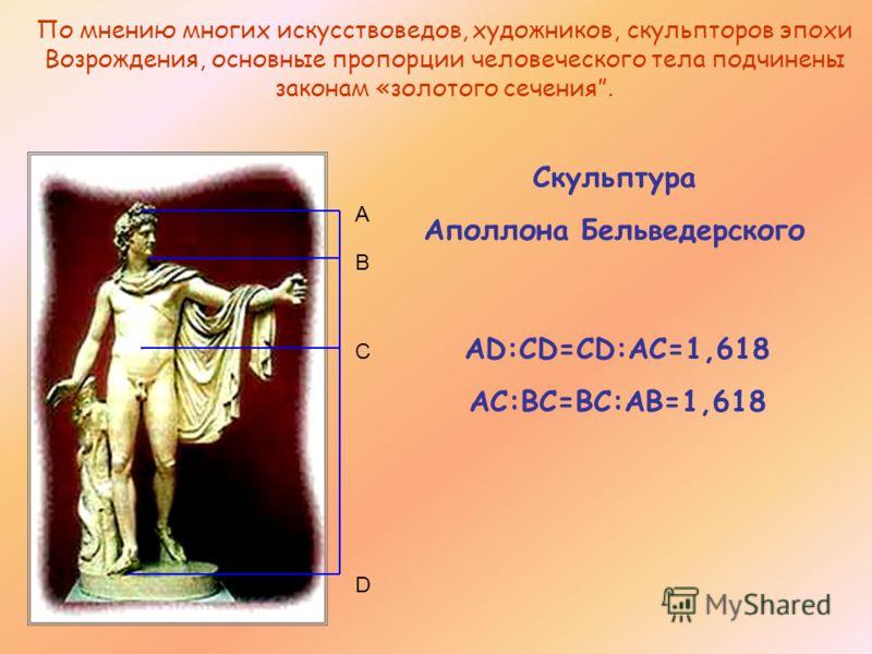 По мнению многих искусствоведов, художников, скульпторов эпохи Возрождения, основные пропорции человеческого тела подчинены законам «золотого сечения. D C B A Скульптура Аполлона Бельведерского AD:CD=CD:AC=1,618 AC:BC=BC:AB=1,618