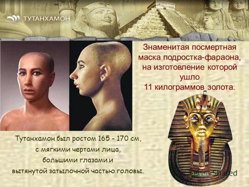 Тутанхамон был ростом 165 - 170 см, c мягкими чертами лица, большими глазами и вытянутой затылочной частью головы. Знаменитая посмертная маска подростка-фараона, на изготовление которой ушло 11 килограммов золота.