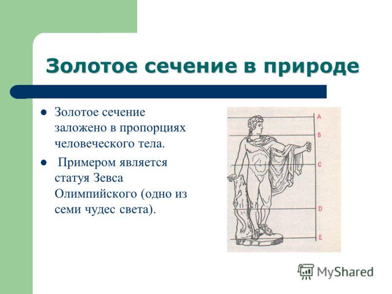 Золотое сечение в природе Золотое сечение заложено в пропорциях человеческого тела. Примером является статуя Зевса Олимпийского (одно из семи чудес света).