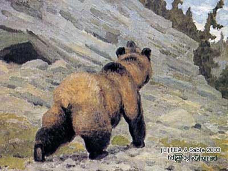 Самым большим хищником того времени был пещерный медведь. Он почти на треть крупнее современных медведей. Жил медведь в пещерах, питался преимущественно растительностью.