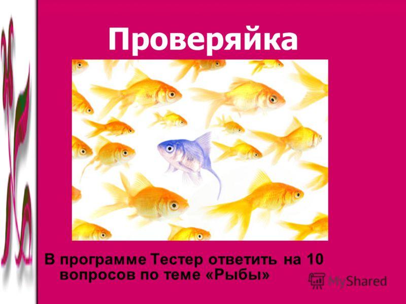Проверяйка В программе Тестер ответить на 10 вопросов по теме «Рыбы»