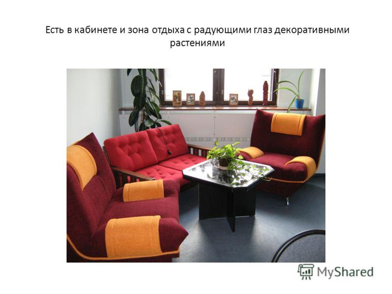 Есть в кабинете и зона отдыха с радующими глаз декоративными растениями