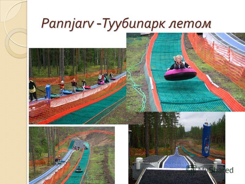 Pannjarv - Туубипарк летом