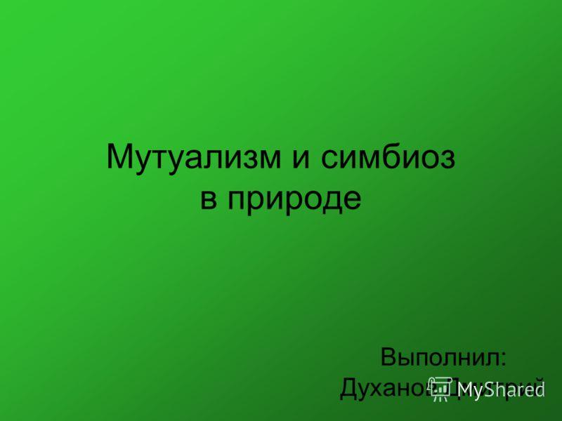 Мутуализм и симбиоз в природе Выполнил: Духанов Дмитрий