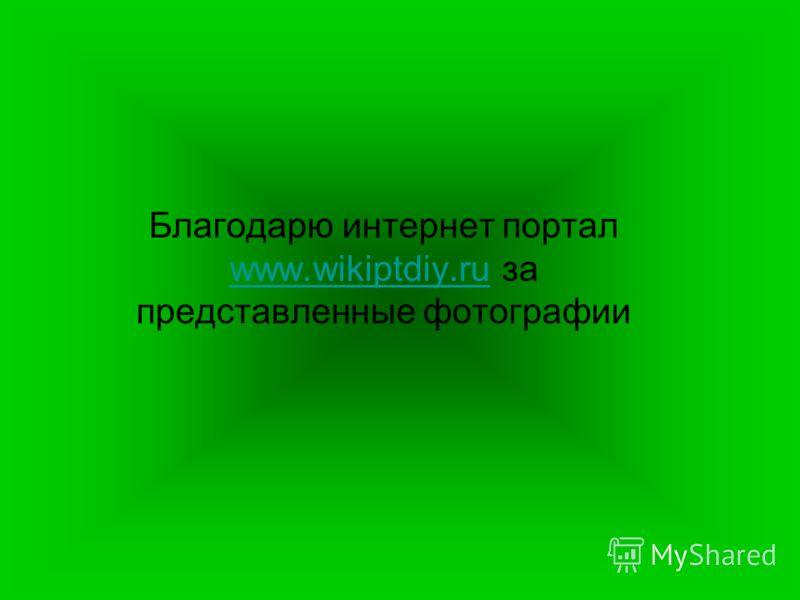 Благодарю интернет портал www.wikiptdiy.ru за представленные фотографии www.wikiptdiy.ru