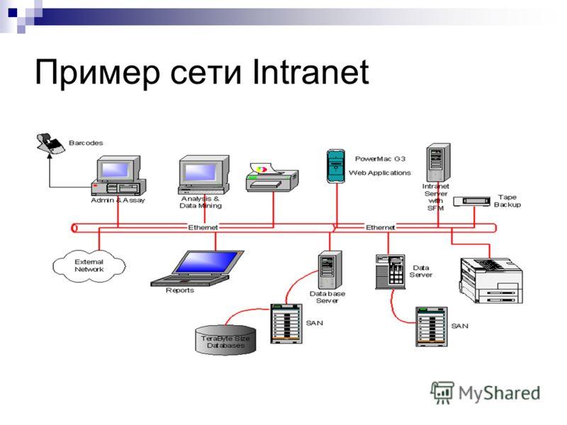 Пример сети Intranet