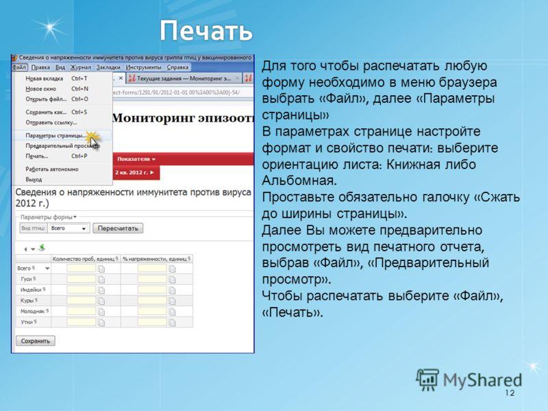 Печать 12 Для того чтобы распечатать любую форму необходимо в меню браузера выбрать « Файл », далее « Параметры страницы » В параметрах странице настройте формат и свойство печати : выберите ориентацию листа : Книжная либо Альбомная. Проставьте обяза