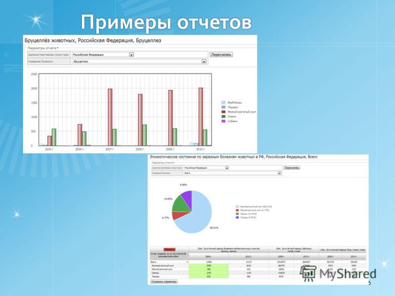 Примеры отчетов 6