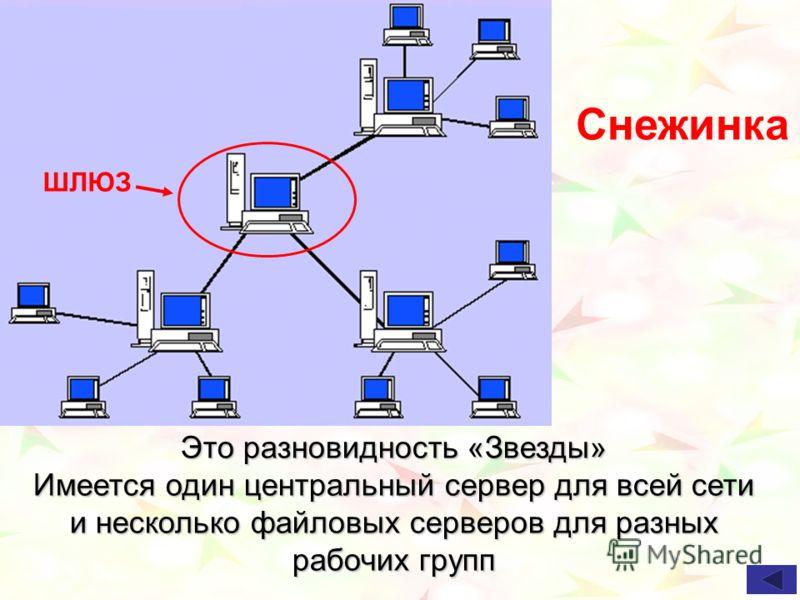 Снежинка Это разновидность «Звезды» Имеется один центральный сервер для всей сети и несколько файловых серверов для разных рабочих групп ШЛЮЗ
