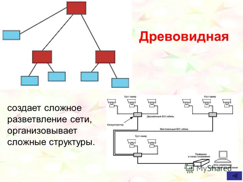 Древовидная создает сложное разветвление сети, организовывает сложные структуры.