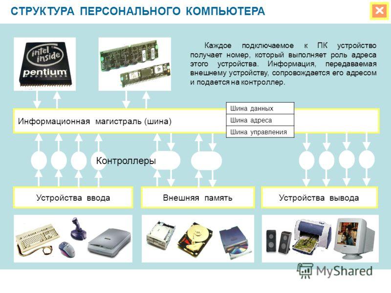 СТРУКТУРА ПЕРСОНАЛЬНОГО КОМПЬЮТЕРА Информационная магистраль (шина) Устройства вводаУстройства выводаВнешняя память Каждое подключаемое к ПК устройство получает номер, который выполняет роль адреса этого устройства. Информация, передаваемая внешнему