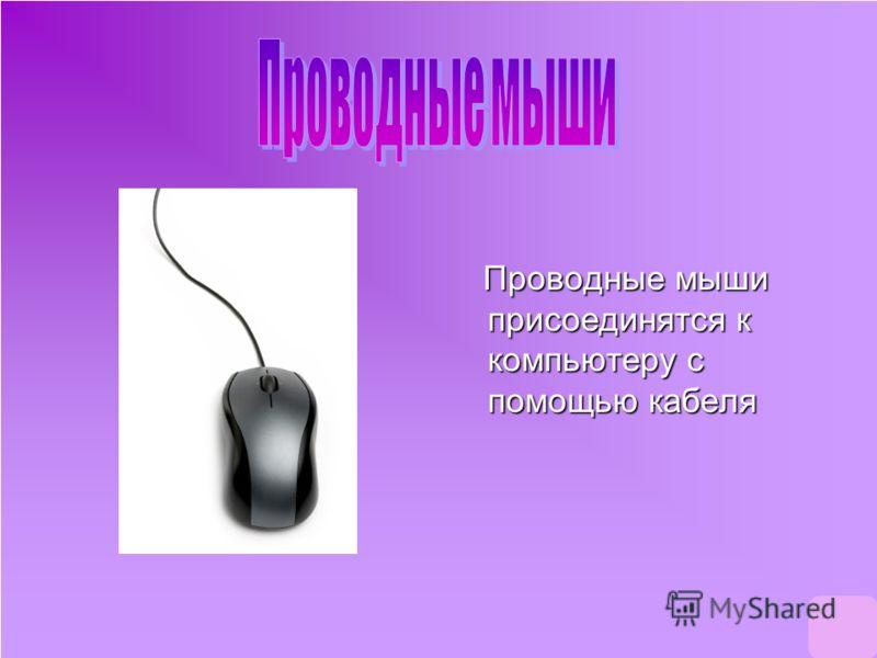Проводные мыши присоединятся к компьютеру с помощью кабеля Проводные мыши присоединятся к компьютеру с помощью кабеля