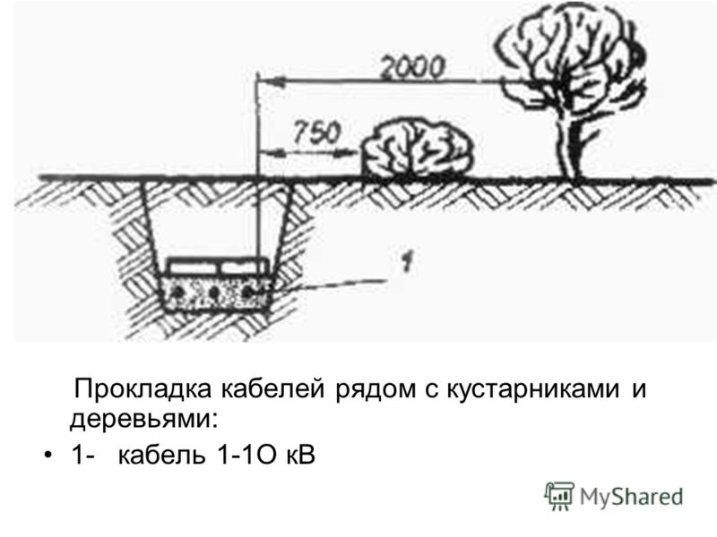 Прокладка кабелей рядом с кустарниками и деревьями: 1- кабель 1-1О кВ