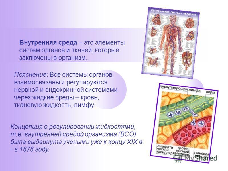Внутренняя среда – это элементы систем органов и тканей, которые заключены в организм. Пояснение: Все системы органов взаимосвязаны и регулируются нервной и эндокринной системами через жидкие среды – кровь, тканевую жидкость, лимфу. Концепция о регул