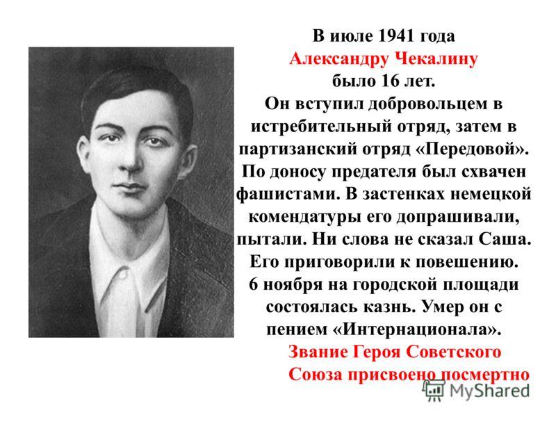 В июле 1941 года Александру Чекалину было 16 лет. Он вступил добровольцем в истребительный отряд, затем в партизанский отряд «Передовой». По доносу предателя был схвачен фашистами. В застенках немецкой комендатуры его допрашивали, пытали. Ни слова не