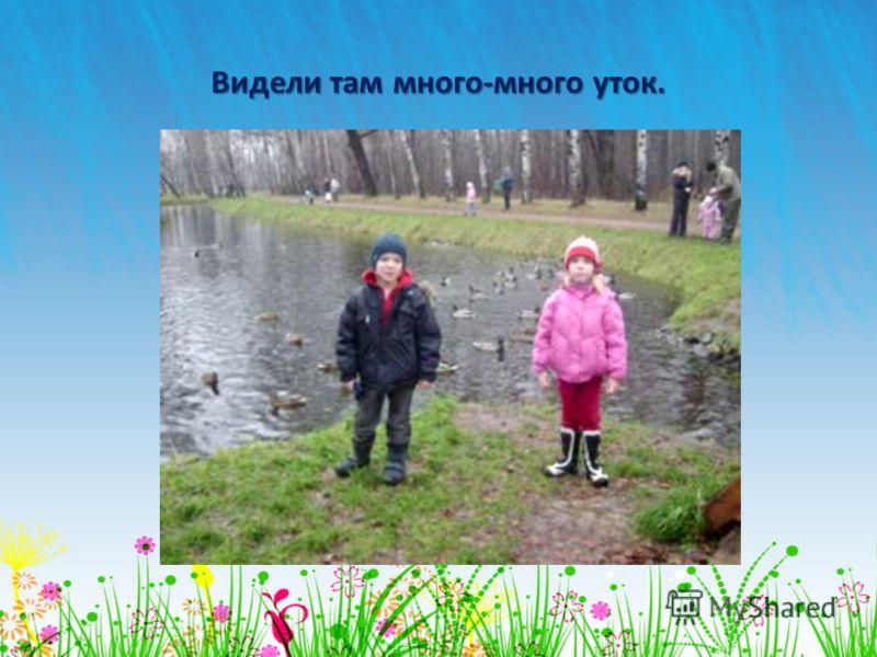 Наконец, мы дошли до Путяевских прудов.