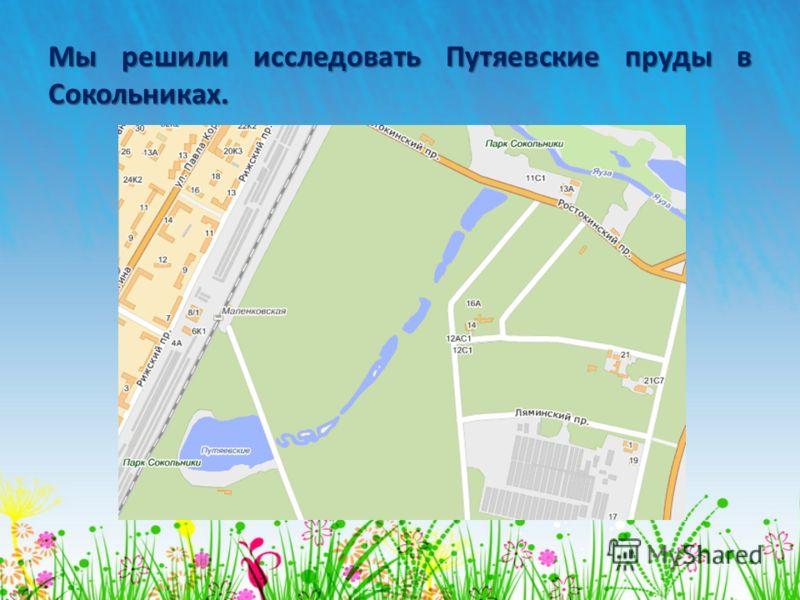 Водоёмы парков Москвы Презентация подготовлена Авксентием и Калиной Панфёровыми