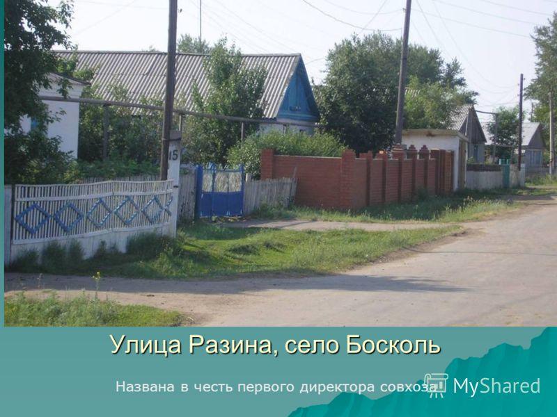Улица Разина, село Босколь Названа в честь первого директора совхоза