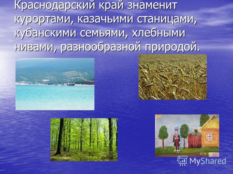 Краснодарский край знаменит курортами, казачьими станицами, кубанскими семьями, хлебными нивами, разнообразной природой.