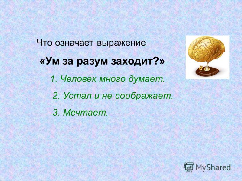 Что означает выражение «Ум за разум заходит?» 1. Человек много думает. 2. Устал и не соображает. 3. Мечтает.