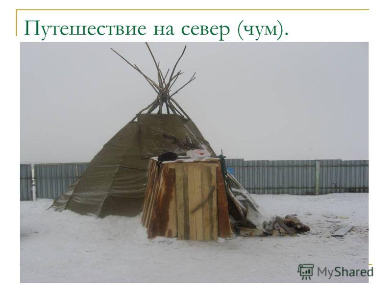Путешествие на север (чум).