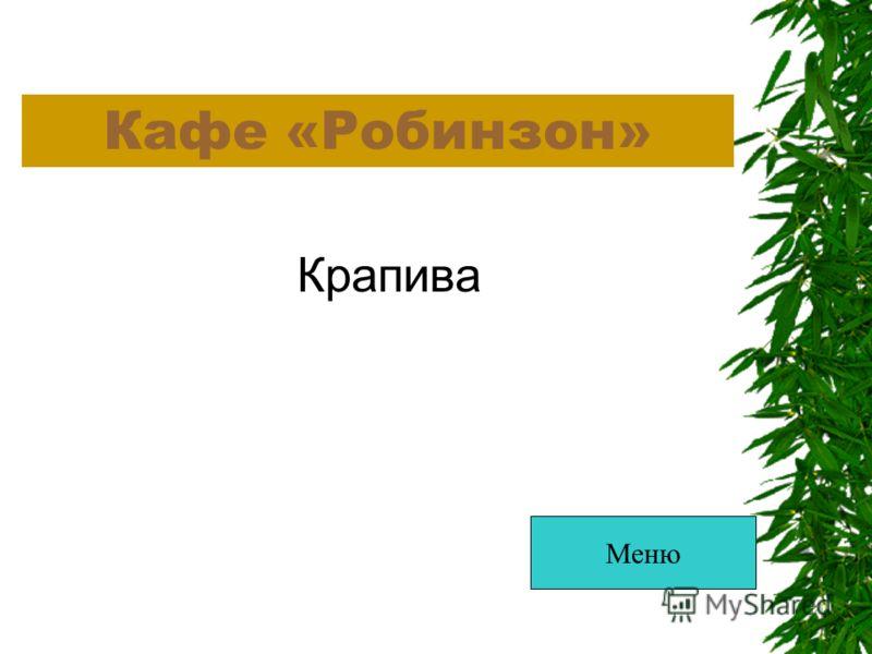 Кафе «Робинзон» Крапива Меню
