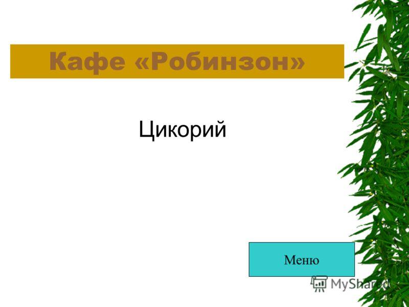 Кафе «Робинзон» Цикорий Меню
