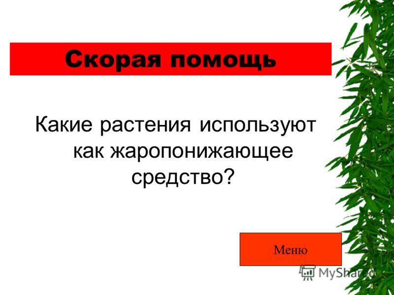 Скорая помощь Какие растения используют как жаропонижающее средство? Меню