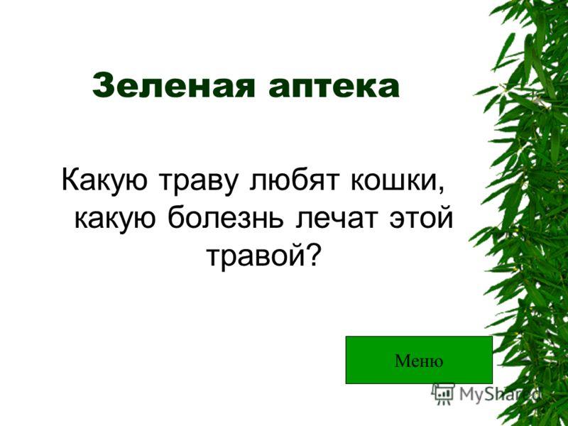 Зеленая аптека Какую траву любят кошки, какую болезнь лечат этой травой? Меню