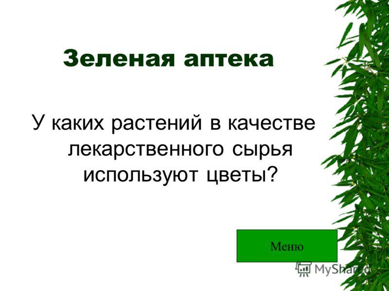 Зеленая аптека У каких растений в качестве лекарственного сырья используют цветы? Меню