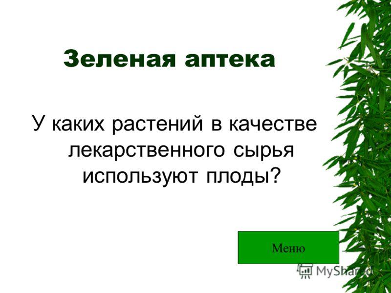 Зеленая аптека У каких растений в качестве лекарственного сырья используют плоды? Меню