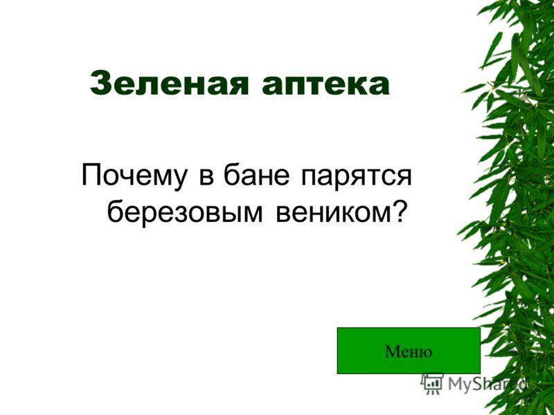 Зеленая аптека Почему в бане парятся березовым веником? Меню
