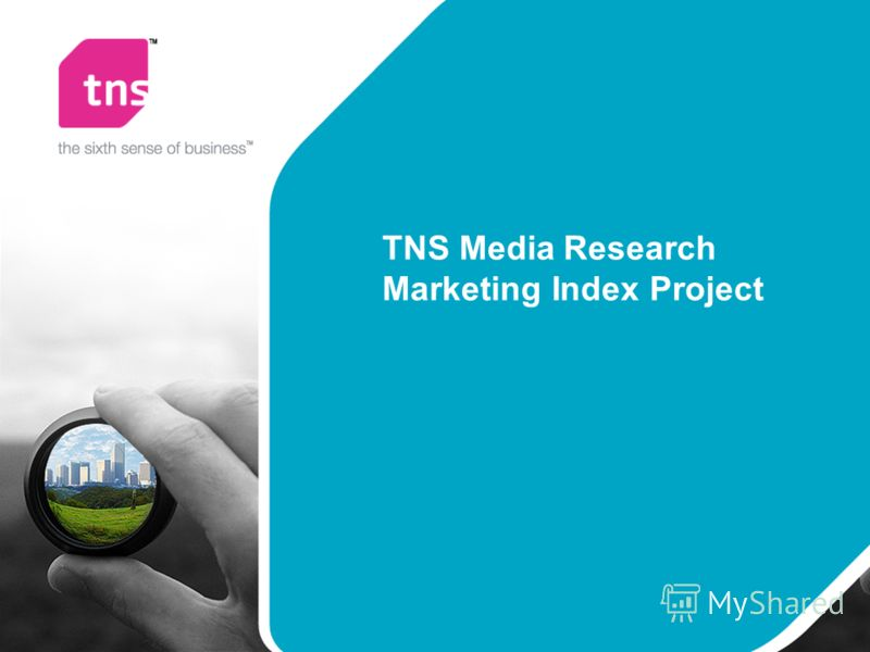 TNS Media Research Marketing Index Project