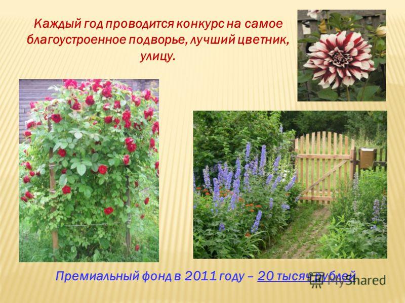 Каждый год проводится конкурс на самое благоустроенное подворье, лучший цветник, улицу. Премиальный фонд в 2011 году – 20 тысяч рублей