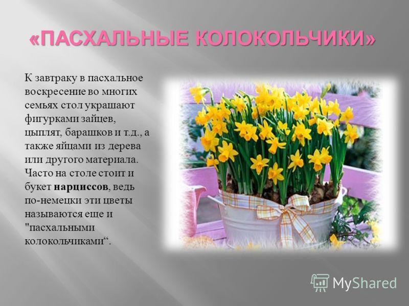 «ПАСХАЛЬНЫЕ КОЛОКОЛЬЧИКИ» К завтраку в пасхальное воскресение во многих семьях стол украшают фигурками зайцев, цыплят, барашков и т.д., а также яйцами из дерева или другого материала. Часто на столе стоит и букет нарциссов, ведь по-немецки эти цветы
