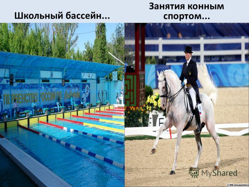 Школьный бассейн... Занятия конным спортом...