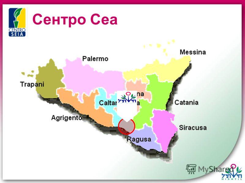 Сентро Сеа