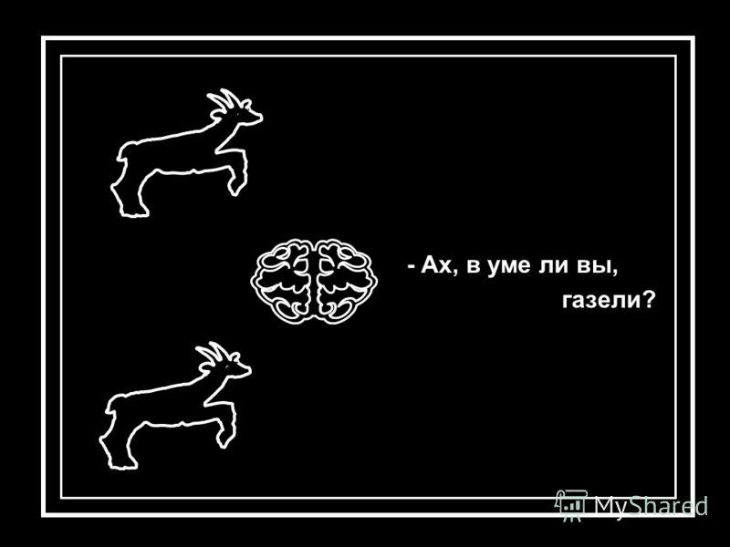 - Ах, в уме ли вы, газели?