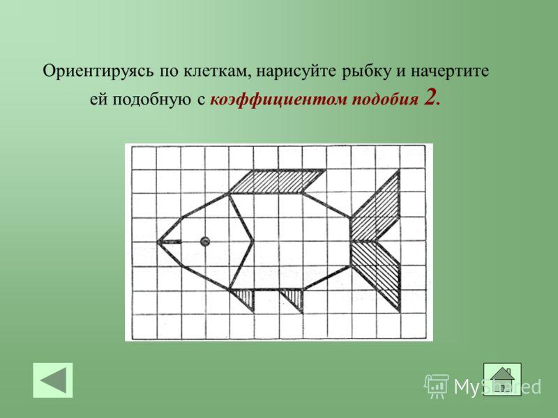 Ориентируясь по клеткам, нарисуйте рыбку и начертите ей подобную с коэффициентом подобия 2.