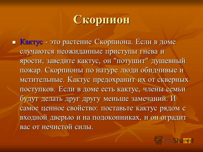 Скорпион Кактус - это растение Скорпиона. Если в доме случаются неожиданные приступы гнева и ярости, заведите кактус, он