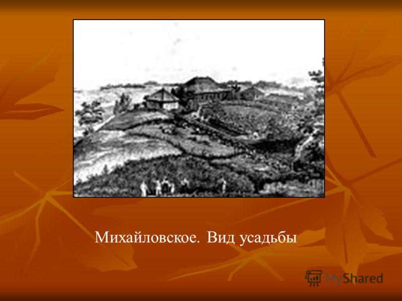 Михайловское. Вид усадьбы