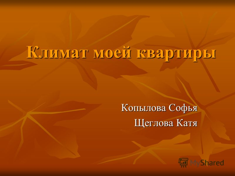 Климат моей квартиры Копылова Софья Щеглова Катя