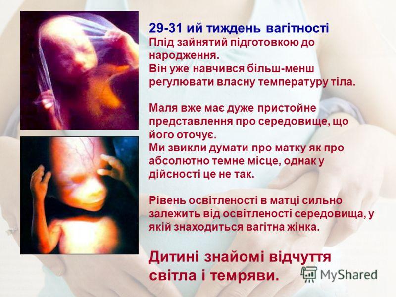 29-31 ий тиждень вагітності Плід зайнятий підготовкою до народження. Він уже навчився більш-менш регулювати власну температуру тіла. Маля вже має дуже пристойне представлення про середовище, що його оточує. Ми звикли думати про матку як про абсолютно