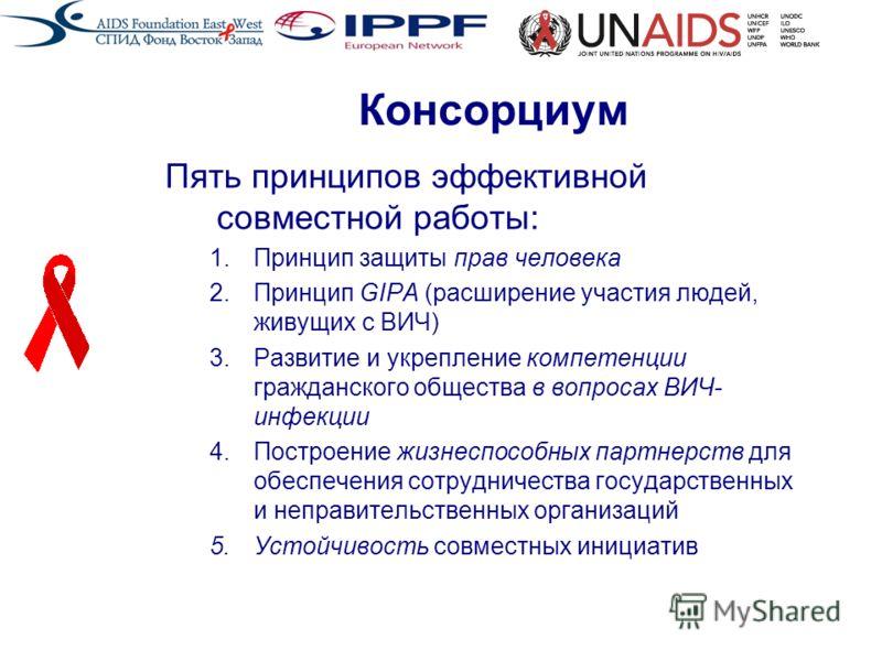 Консорциум Пять принципов эффективной совместной работы: 1.Принцип защиты прав человека 2.Принцип GIPA (расширение участия людей, живущих с ВИЧ) 3.Развитие и укрепление компетенции гражданского общества в вопросах ВИЧ- инфекции 4.Построение жизнеспос