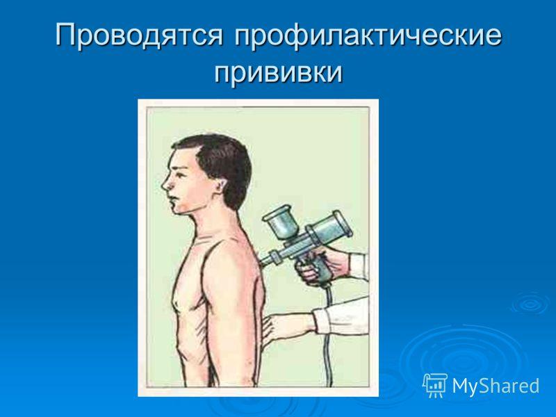 Проводятся профилактические прививки