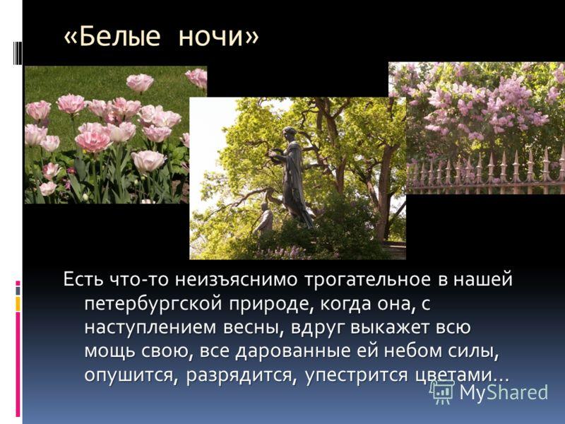 Есть что-то неизъяснимо трогательное в нашей петербургской природе, когда она, с наступлением весны, вдруг выкажет всю мощь свою, все дарованные ей небом силы, опушится, разрядится, упестрится цветами... «Белые ночи»