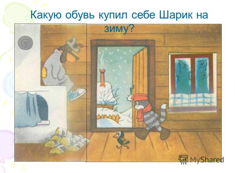 Какую обувь купил себе Шарик на зиму?