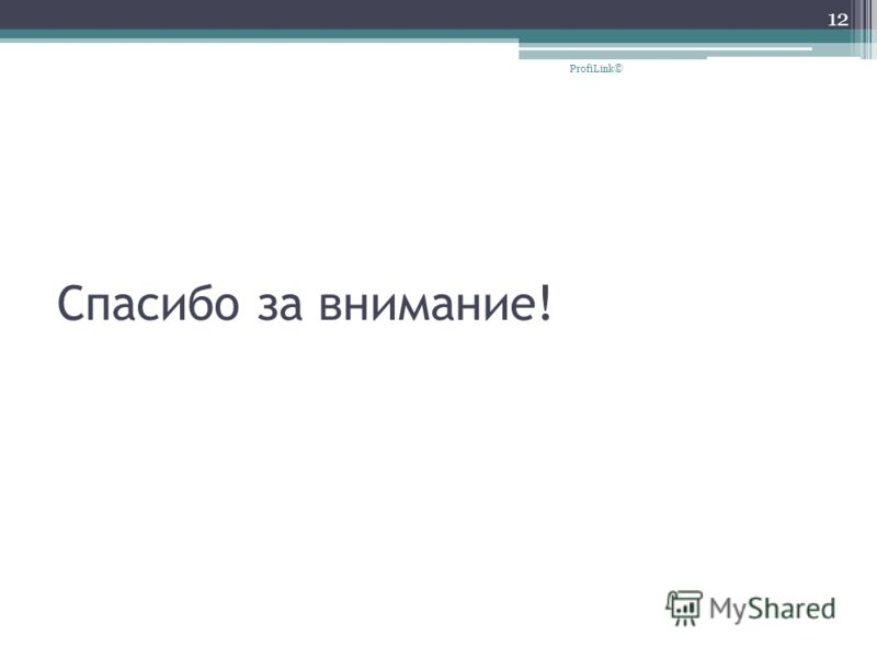 Спасибо за внимание! 12 ProfiLink©