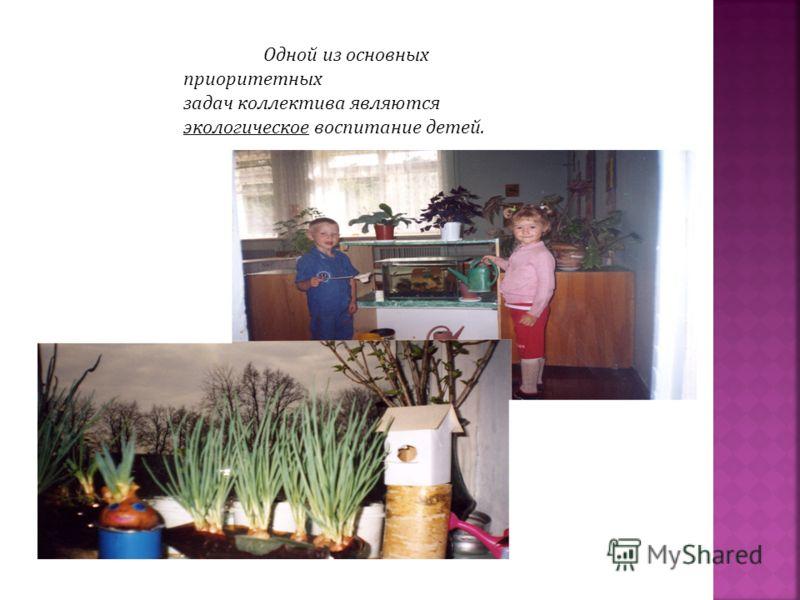 Одной из основных приоритетных задач коллектива являются экологическое воспитание детей.