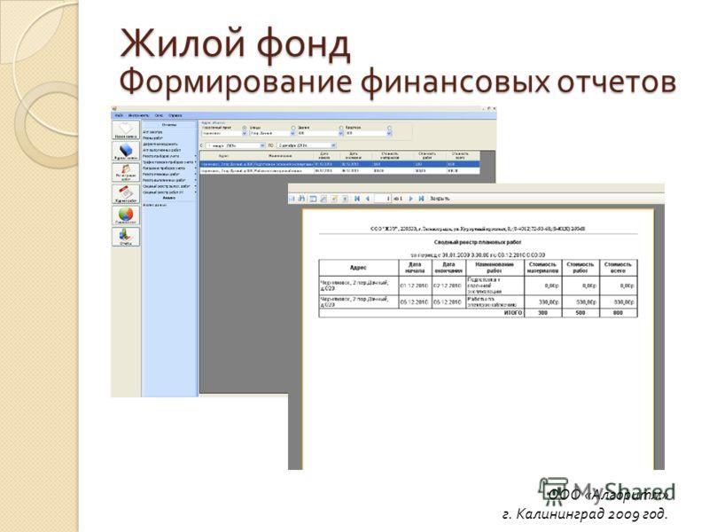 Формирование финансовых отчетов ООО «Алгоритм» г. Калининград 2009 год. Жилой фонд